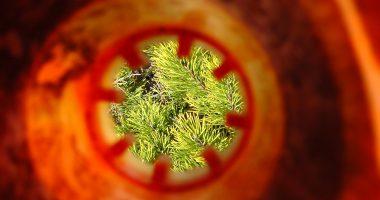 Vijf tips om tunnelvisie te voorkomen
