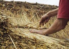 Je eigen dakdekkersbedrijf beginnen: dit moet je weten